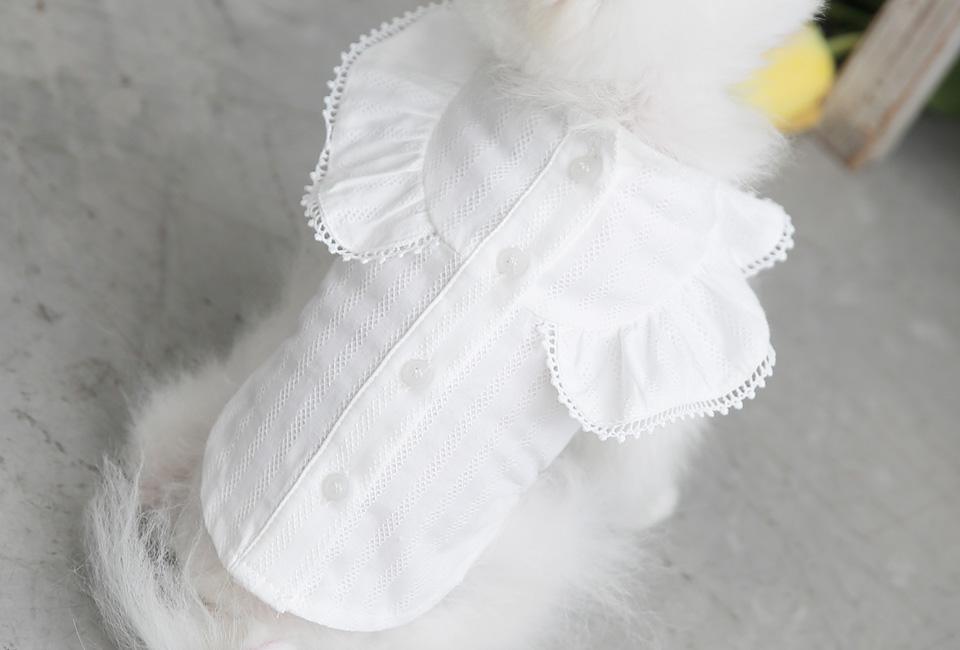 엔젤 윙 블라우스 화이트 - 토토앤로이, 25,000원, 의류/액세서리, 의류